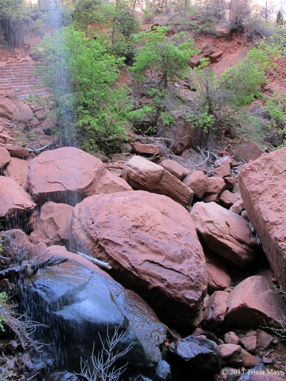 Small falls dropping into the first pool of the Emerald Pools trail