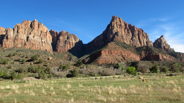 Approaching our first trail - the Watchman