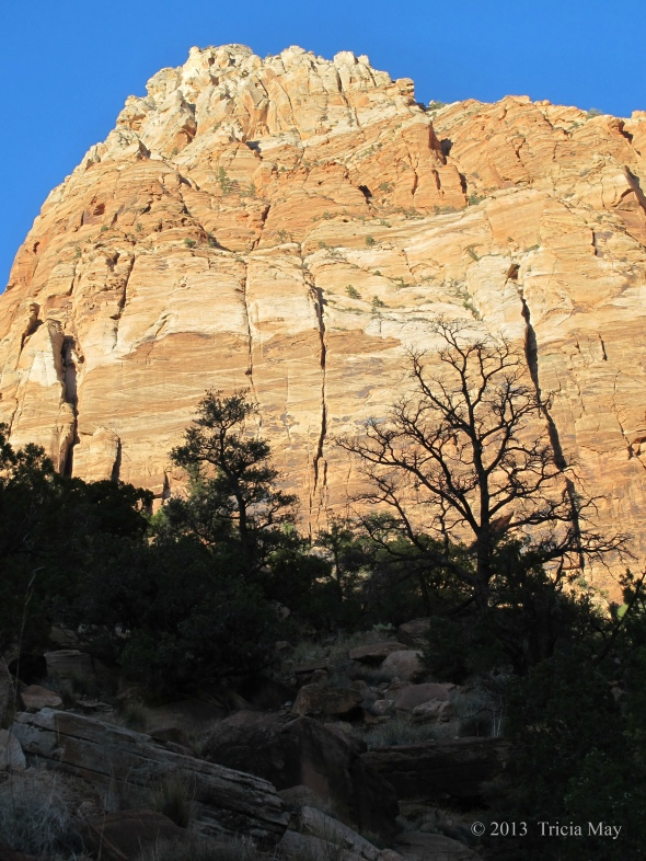 On the Watchman trail as the sun sets
