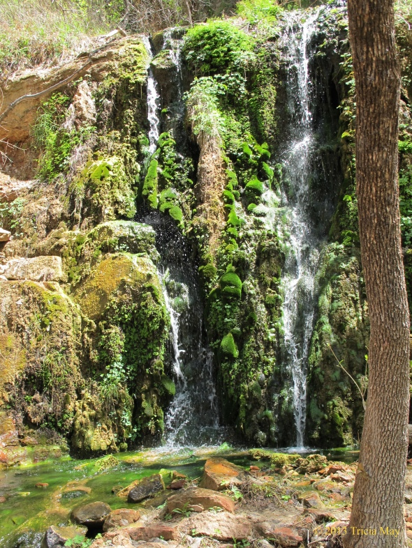 Menu Falls