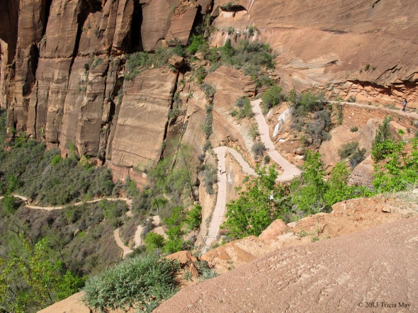 Angels Landing switchbacks
