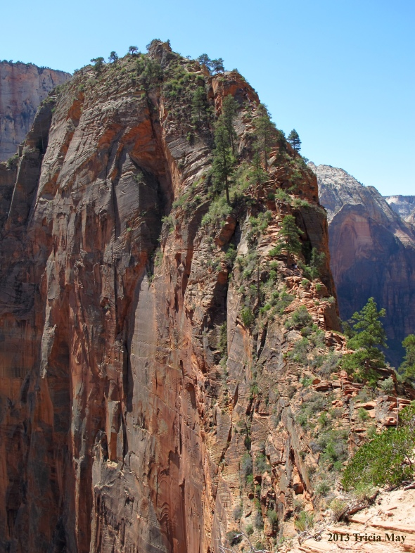 The thin saddle up to the top of Angels Landing