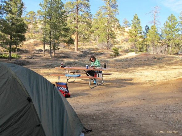Our  Bryce Canyon campsite...Loop C #64