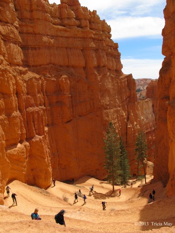 Switchbacks on the Navajo Loop trail