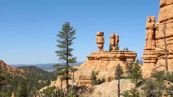 Hoodoo on Pink Ledges Trail