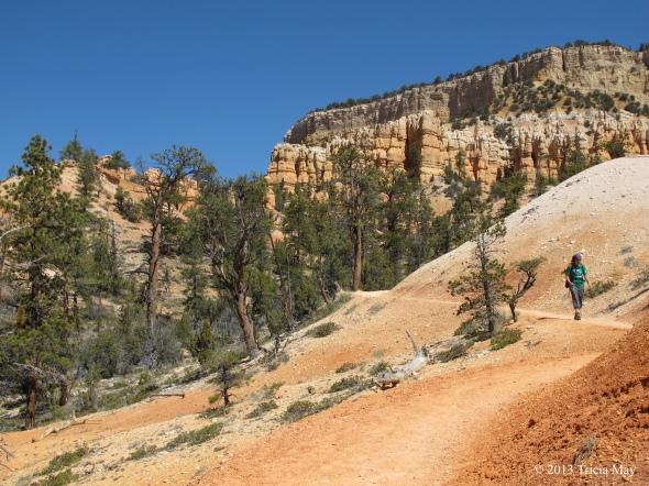 Gentle meandering trail on the  Fairyland Loop