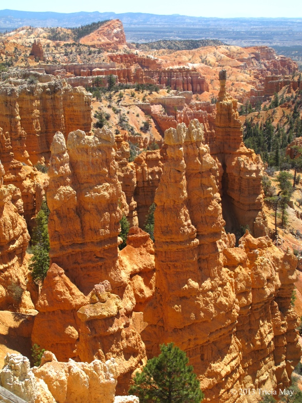 Hoodoos along the Fairyland Loop
