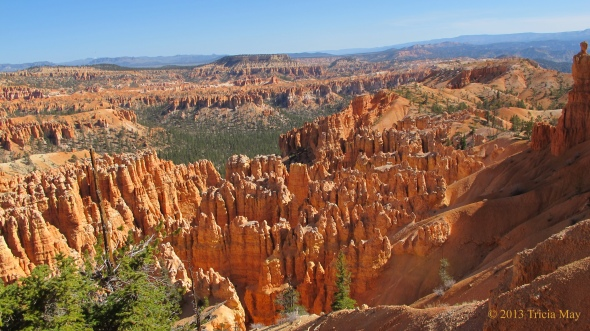 View from Bryce Point, the start of the Peekaboo Loop