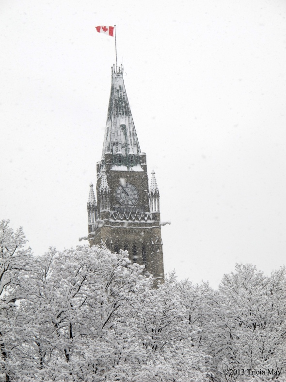 The Peacetower from Major's Hill Park