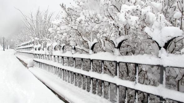 Fence along Parliament Hill