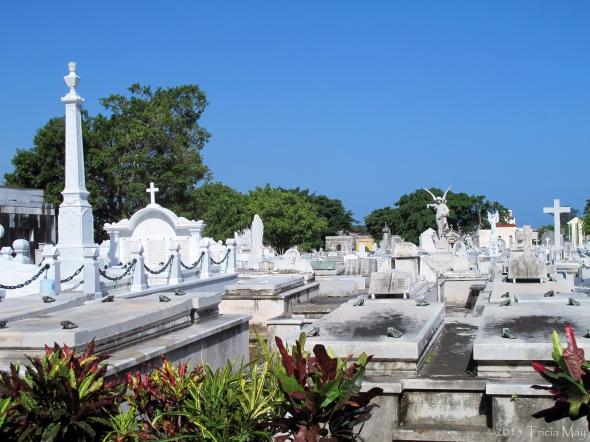 Necropolis Cristóbal Colón ©
